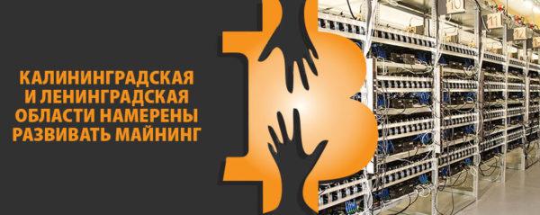 Калининградская и Ленинградская области намерены развивать майнинг